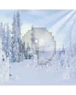 Snowy Forest Computer Printed Photography Backdrop LMG-167