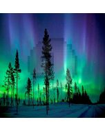 Aurora In Forest Computer Printed Photography Backdrop LMG-170