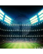Immense Stadium Computer Printed Photography Backdrop S-1175