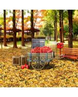 Happy Autumn Computer Printed Photography Backdrop S-1780