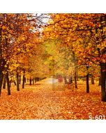Autumn Fallen Leaves Computer Printed Photography Backdrop S-601