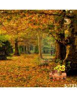 Autumn Picnic Computer Printed Photography Backdrop S-735