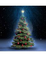 Fancy Christmas Tree  Computer Printed Photography Backdrop ST-032