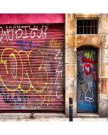 Graffiti Door Computer Printed Photography Backdrop XLX-314