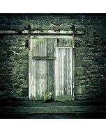 Shabby Door  Computer Printed Photography Backdrop YKY-115