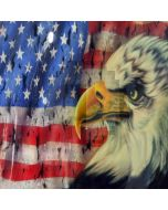 American flag and eagle Computer Printed Photography Backdrop ZJZ-006