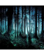 Spooky Forest Computer Printed Photography Backdrop ZJZ-547