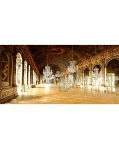 gorgeous ballroom Computer Printed Dance Recital Scenic Backdrop ACP-010