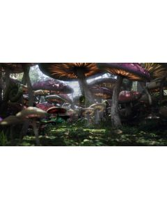 mushroom forest Computer Printed Dance Recital Scenic Backdrop ACP-114