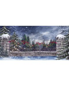 Christmas snow Computer Printed Dance Recital Scenic Backdrop ACP-141