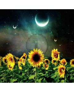 Sunflower With Moon Computer Printed Photography Backdrop LMG-004