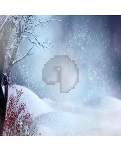 Romantic Snow Computer Printed Photography Backdrop LMG-008