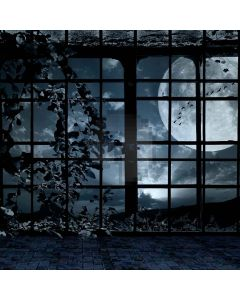 Spooky Window Computer Printed Photography Backdrop LMG-024