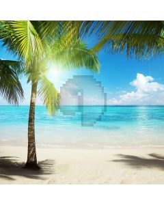 Growing Coconut Trees Computer Printed Photography Backdrop S-163