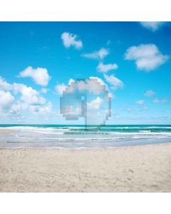 Intoxicated Sea Computer Printed Photography Backdrop S-164