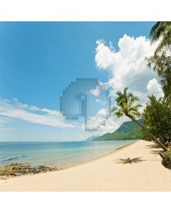 Tropical Zone  Computer Printed Photography Backdrop S-165