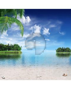 Soft Beach Computer Printed Photography Backdrop S-166