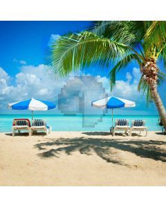 Comfortable Sunbathing Computer Printed Photography Backdrop S-168