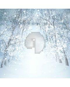 Heavy Snow Digital Printed Photography Backdrop YHA-499