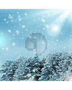Fluttering Snowflakes Digital Printed Photography Backdrop YHA-504