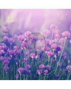 Exuberant Flowers Digital Printed Photography Backdrop YHA-558