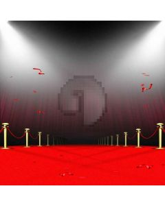 Gorgeous Red Carpet Digital Printed Photography Backdrop YHB-002