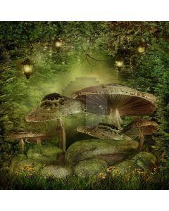 Mysterious Mushroom Digital Printed Photography Backdrop YHB-022