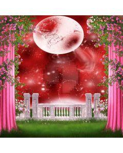 Wonderful Stage Digital Printed Photography Backdrop YHB-023