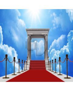 Bright Red Carpet Digital Printed Photography Backdrop YHB-029