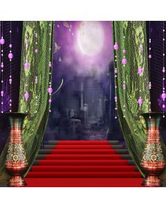 Castle Show Digital Printed Photography Backdrop YHB-031