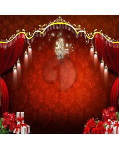 Gifts Stage Digital Printed Photography Backdrop YHB-043