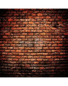 Different Brick Wall Digital Printed Photography Backdrop YHB-092