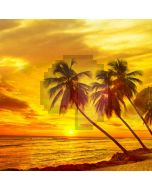 Tree Sunset Sea Computer Printed Photography Backdrop AUT-245