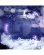 Beautiful night sky Computer Printed Photography Backdrop DT-LP-0054