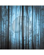 Quiet Dark Forest Computer Printed Photography Backdrop LMG-106