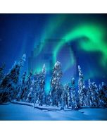 Aurora In Snowy Forest Computer Printed Photography Backdrop LMG-169