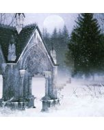 Freezing Castle Computer Printed Photography Backdrop LMG-172