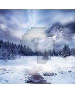 Freezing World Computer Printed Photography Backdrop LMG-176