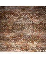 Old Bricks Wall Computer Printed Photography Backdrop S-1110