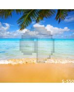 Happy Beach Computer Printed Photography Backdrop S-550