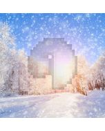Snowy Day Computer Printed Photography Backdrop ST-062
