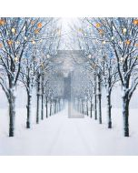 Avenue In Winter Computer Printed Photography Backdrop ZJZ-687